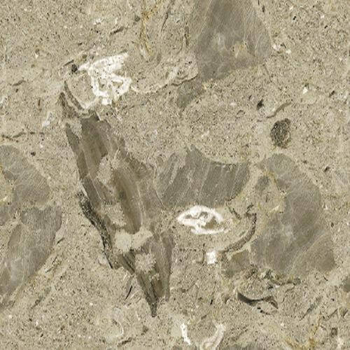 Marble Aurisina fiorita